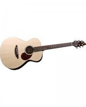 BREEDLOVE PASSAPORT PLUS C200 SR