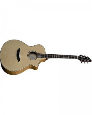 BREEDLOVE  STAGE C250 EF