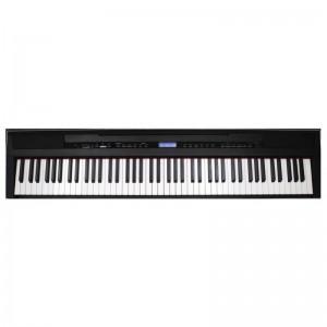 ECHORD SP10 BLACK - PIANOFORTE DIGITALE