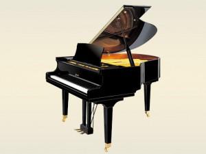 RITMULLER GP150 PIANOFORTE ACUSTICO A CODA