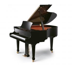 RITMULLER GP160 PIANOFORTE ACUSTICO A CODA