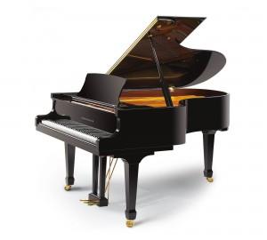 RITMULLER GP188A PIANOFORTE ACUSTICO A CODA