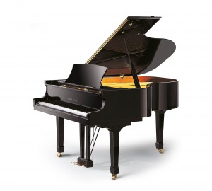 RITMULLER GP170 PIANOFORTE ACUSTICO A CODA